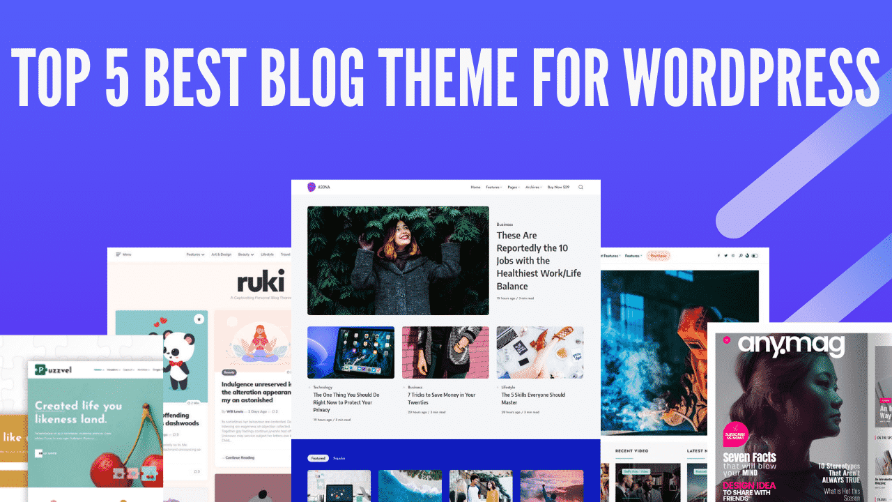 Top 5 Best Unique & Modern Blog Theme For WordPress